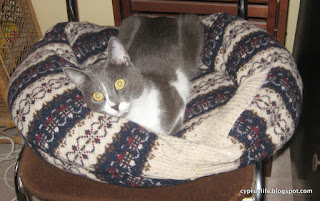 Lady Jane Grey, the petite grey cat, spread out in the large home-made cat bed