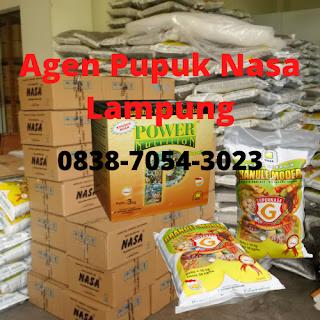 http://www.distributorpupuknasa.com/2020/03/agen-pupuk-nasa-lampung.html