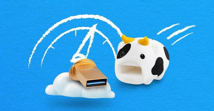 Kingston CNY Cow USB Drive 64GB Storage Capacity