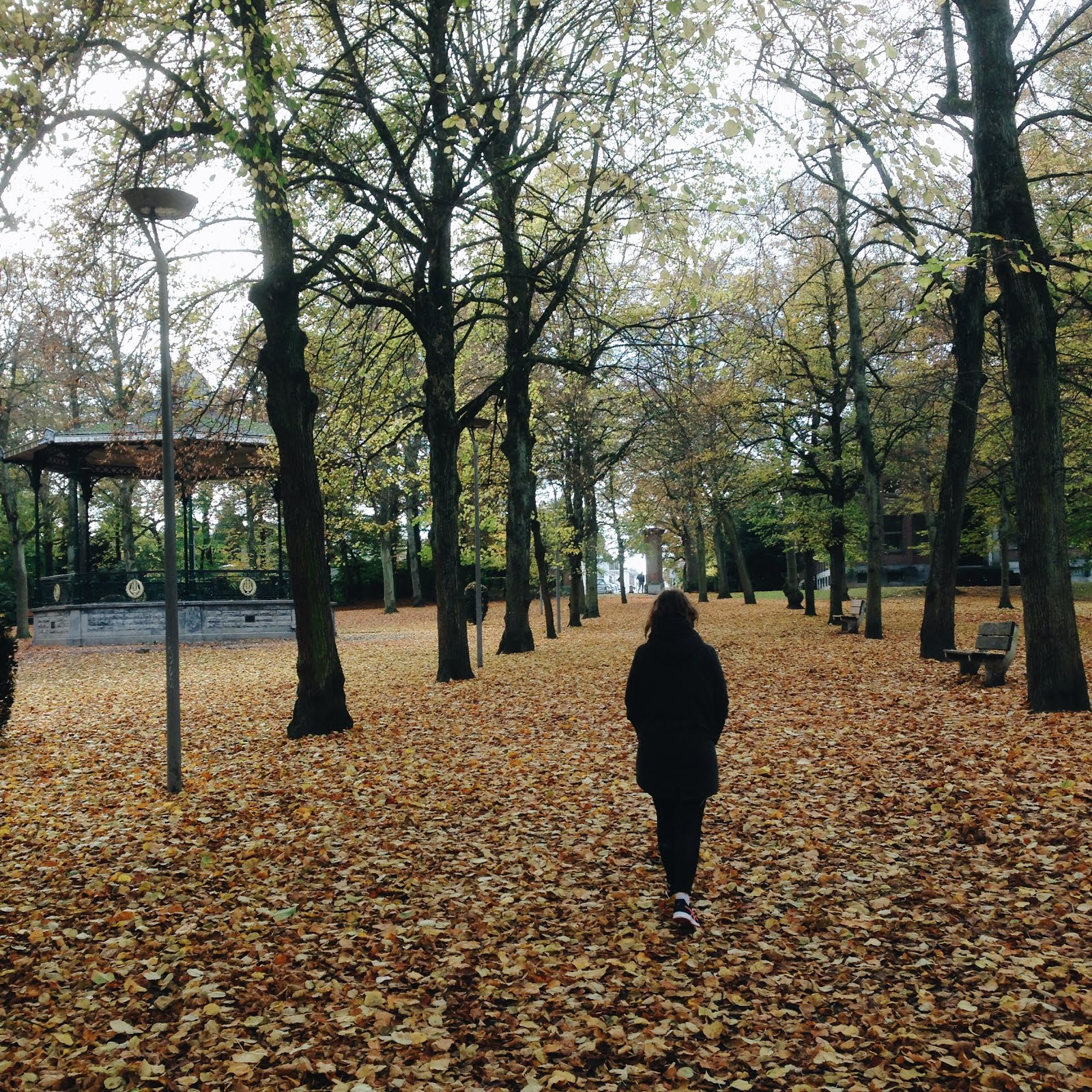 girl walking in the park with fallen leaves on the ground, autumn, fall, ravacholle based in belgium lifestyle blog