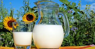 Sehatkah Sarapan Hanya Dengan Susu?