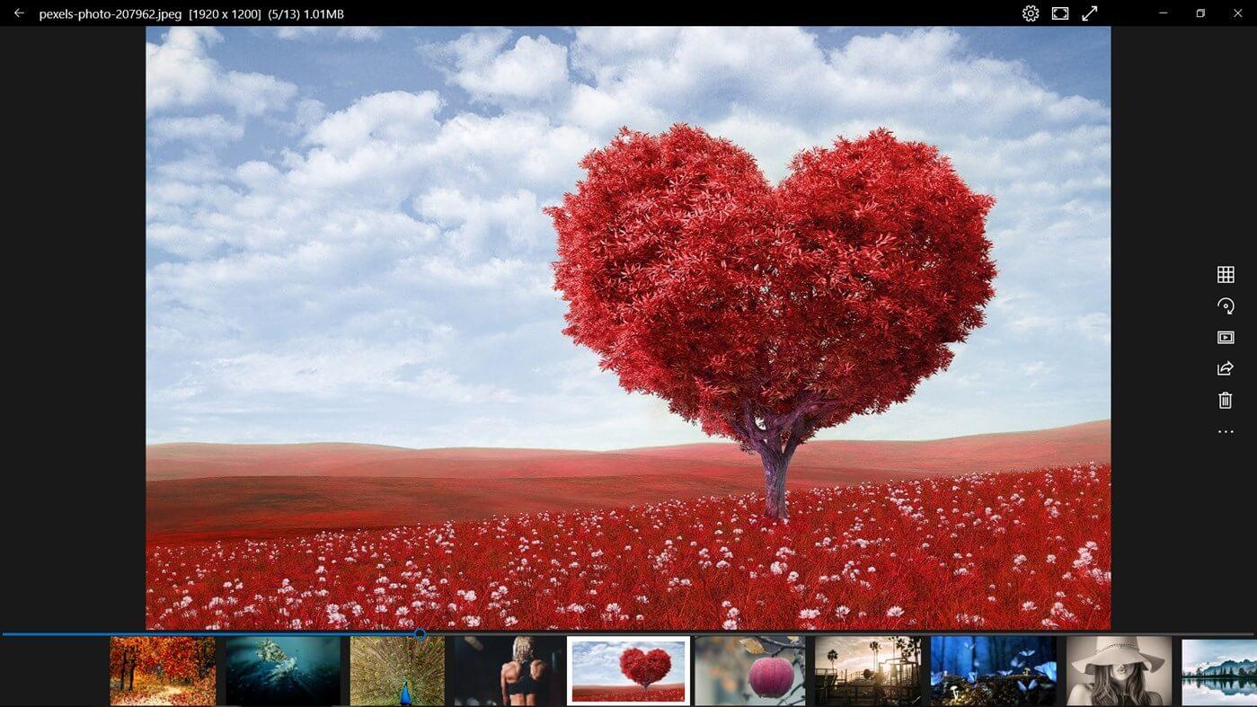 تحميل برنامج عرض الصور ويندوز 10 مجاني Best Photo Viewer For Windows