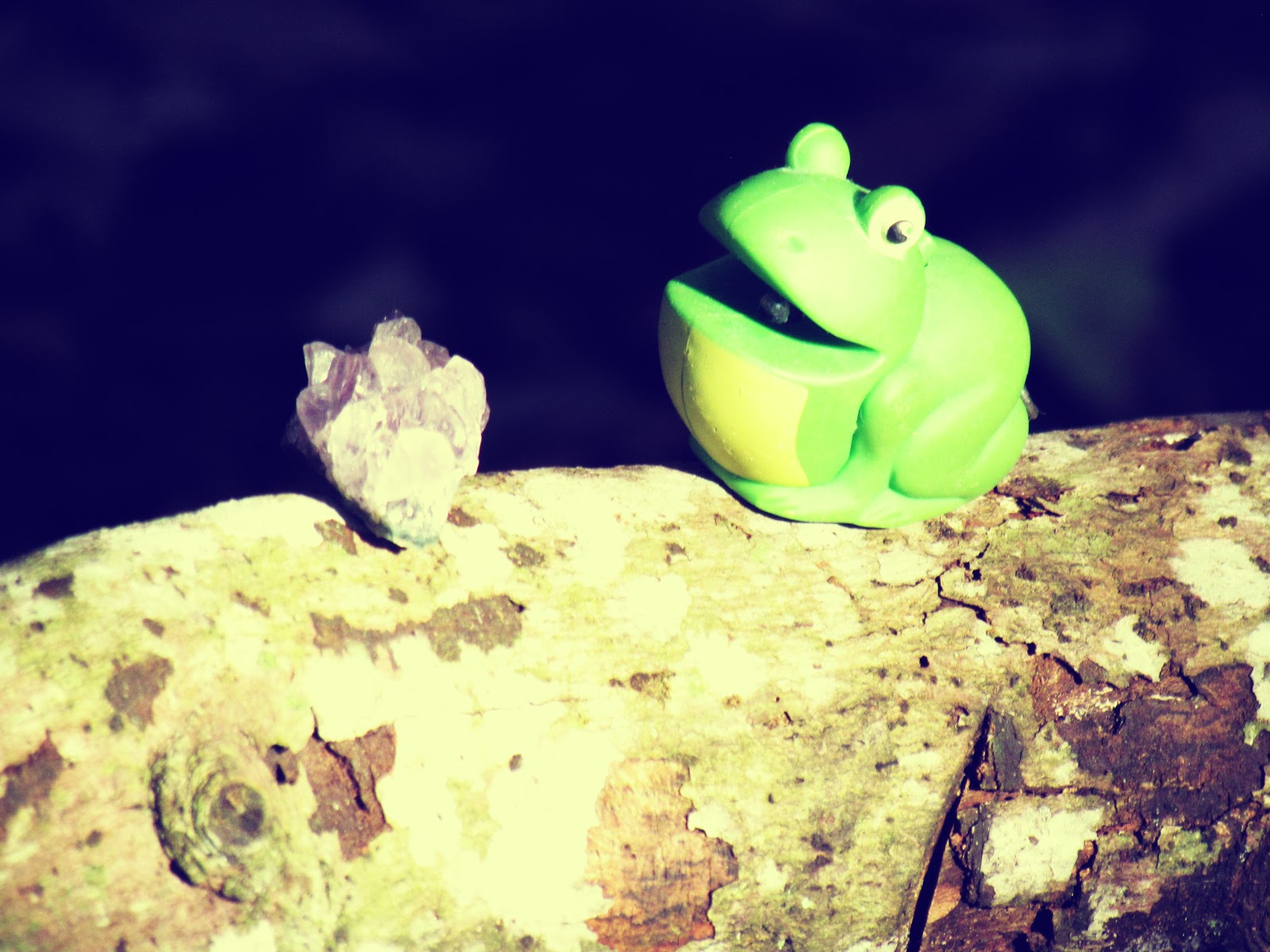 A frog chasing a purple amethyst healing stone on a wooden log in a dark, fairy enchanted forest