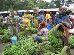 शेतकऱ्यांना कमी मिळणारा बाजारभाव गरीब अवस्था बाजार भाव कारणीभूत