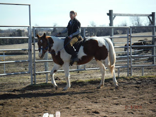 training young horses, starting colts, artist Jen Pratt