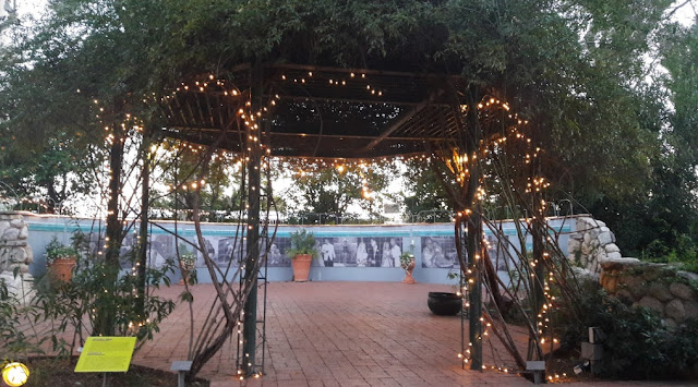 Tucson Wedding Venues Tucson Botanical Gardens wedding