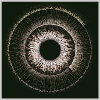 Electric eye made with random walk.