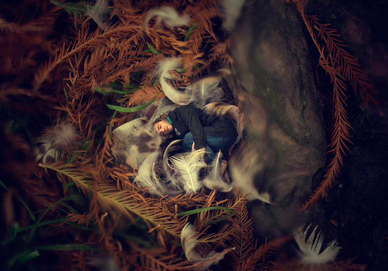 20-Nest-Zev-Hoover-zevhoo Surreal-Miniatures-Photo-Manipulations-www-designstack-co