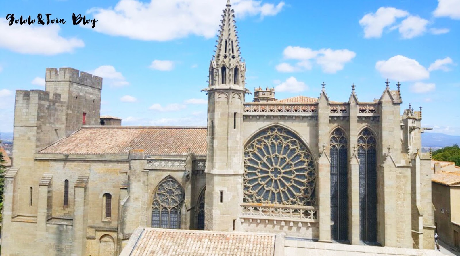 Carcasona-carcassonne-catedral-basilica-saint-nazarie-gotico-romanico-arquitectura-viajar-con-niños-sur-de-francia