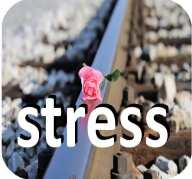 Menekan stres. penyebab stress, obat stress, penyebab depresi, menghidari stress, melawan stress