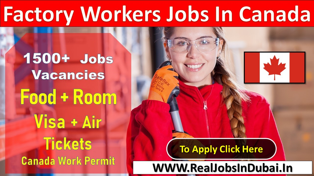 food factory worker jobs in canada, canada factory worker salary, factory jobs in canada for foreigners, factory labour job in canada for indian, factory worker jobs near me, factory jobs - toronto no experience, unskilled jobs in factory in canada, chocolate factory jobs toronto,