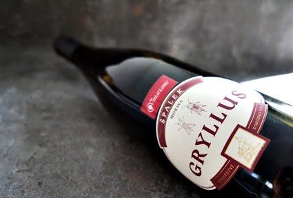 wino idealne na grilla - spalek gryllus