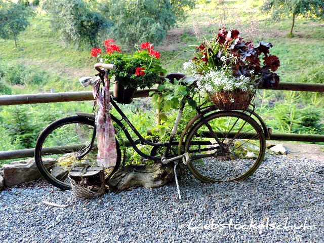 mit Blumen bepflanztes Fahrrad