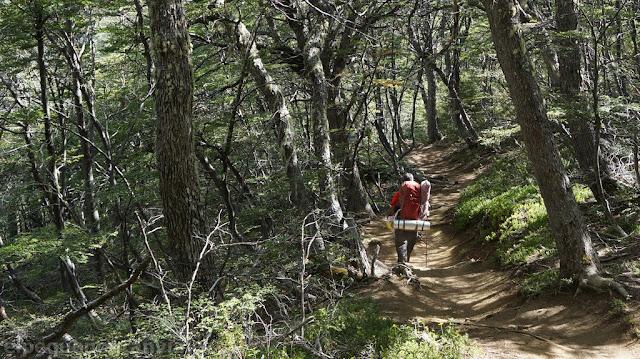 senda, sendero, acceso, refugio san martin, bosque, valle, casa de piedra