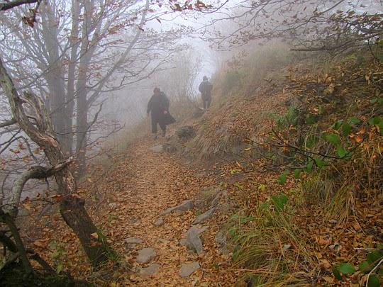 Trawers stoku Stok opadającego do doliny Pańskiego Zwiru.