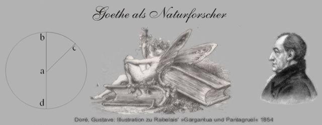 Rudolf Magnus Goethe als Naturforscher