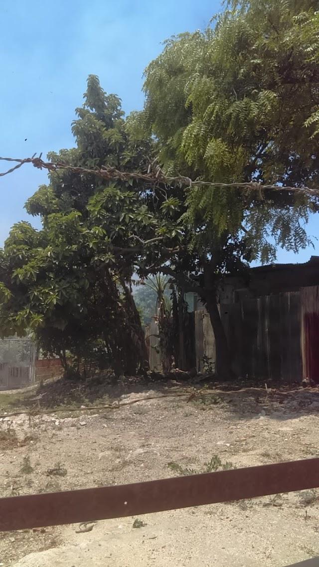 Barahona: Solares de Milton, vecinos corren despavorido por el humo que ha provocado la quema de un solar