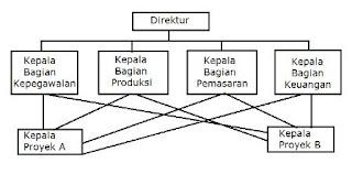 Bentuk organisasi fungsi