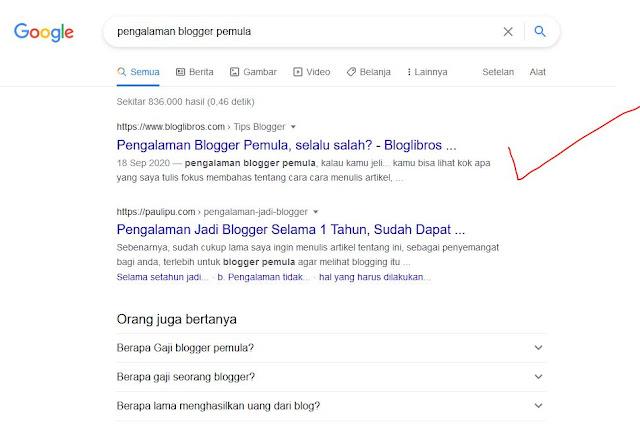 pengalaman blogger pemula