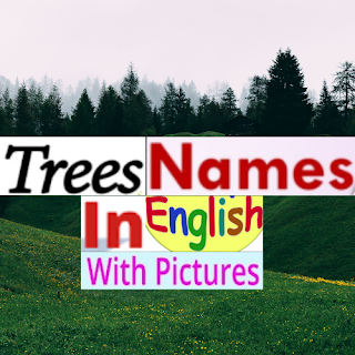 Tree Name In English With Pictures