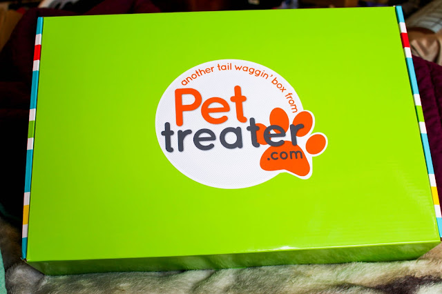 Pet Treater, dog subscription, dog treats, dog toys, subscription box