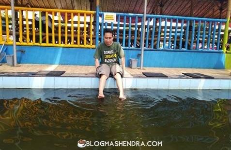 Manfaat Terapi Pijat Ikan