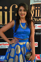 Madhu Shalini Looks Super Cute Slim trim Blue Choli Ghagra IIFA Utsavam Awards 13.JPG