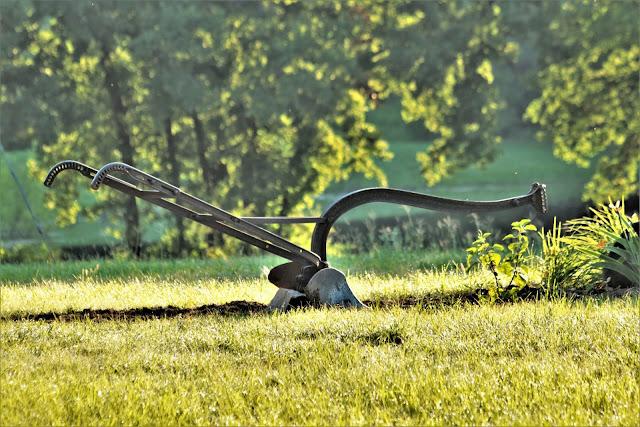 Um arado oxidado velho da exploração agrícola da mão que senta-se na grama verde com uma lagoa da exploração agrícola e as árvores no fundo, na luz do fim da tarde.  Crédito: Sheila Brown usando uma Canon EOS Rebel T6i 1/400s, f 5.6, ISO 400, 140 mm