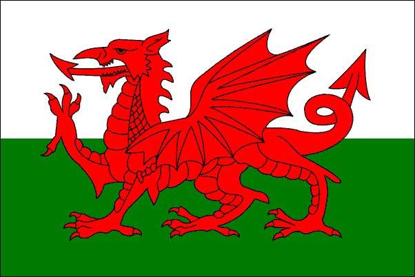 My british life 2010: Welsh Flag and Union Jack!