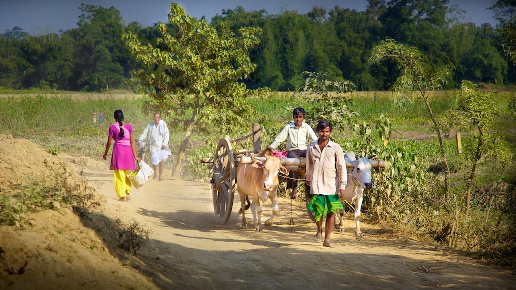 Assam - the land of beauty
