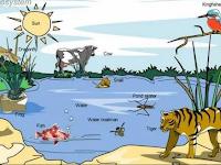 Contoh Makalah Tentang Ekosistem