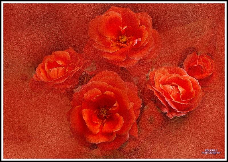 Tableau, les cinq roses, 2019