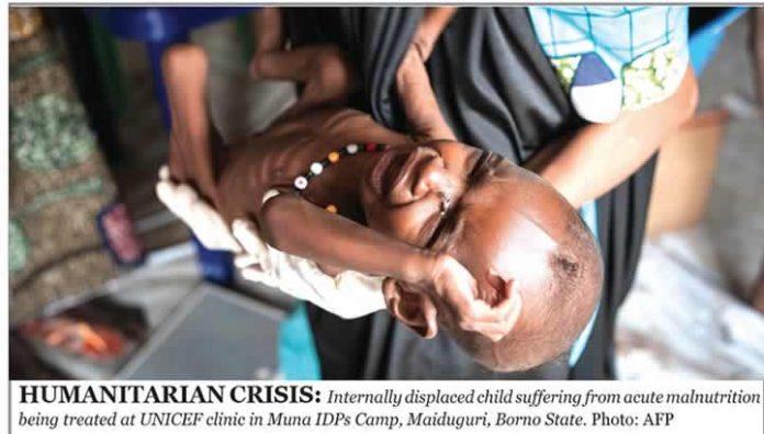 Borno IDP malnutrition
