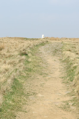 A bare earth path leading through the pale grass to the white trig column on White Hill.