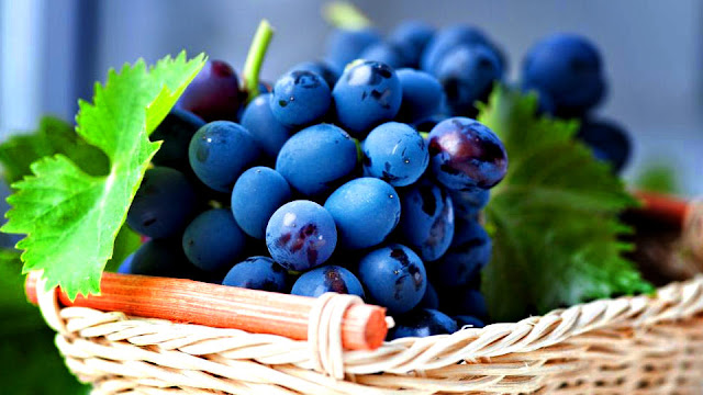Penuaan Fungsi Paru-Paru, Anggur merah