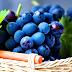 Penuaan Fungsi Paru-Paru Dapat Dicegah Dengan Anggur Merah