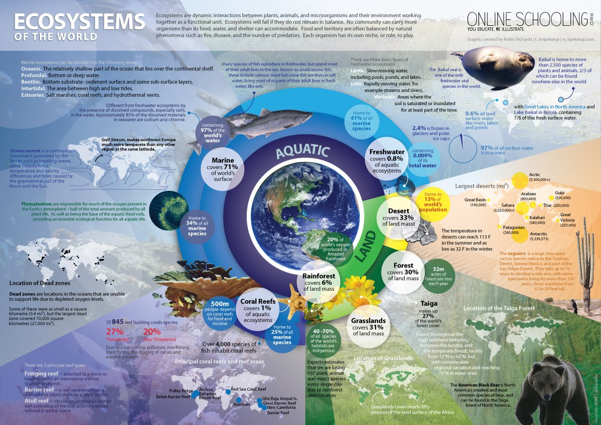 The impact of climate on the nature of cold environment ecosystems