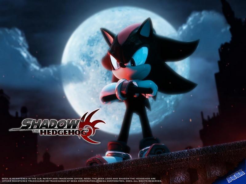 https://1.bp.blogspot.com/-s9enfU9UTqc/T-eYlUV31rI/AAAAAAAAATk/cbjOUnct5gw/s1600/Shadow-The-Hedgehog-shadow-the-hedgehog-10006105-800-600.jpg