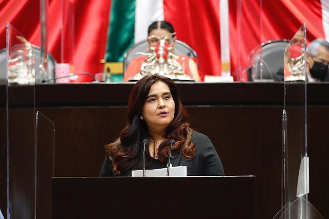 Reforma al Poder Judicial de la Federación, necesaria para combatir con mayor eficacia casos de corrupción, entre otros: PVEM