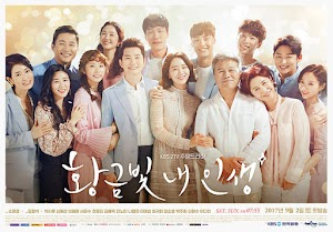 SINOPSIS My Golden Life Episode 1-50 Terakhir ( Drama Korea KBS2 2017-2018)