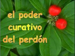 Predica: EL PODER SANADOR DEL PERDÓN