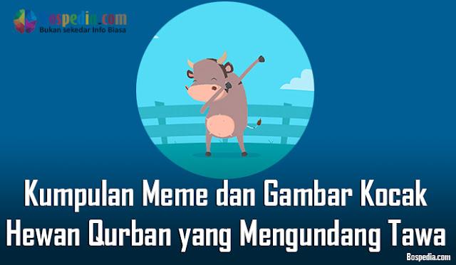 Kumpulan Meme dan Gambar Kocak Hewan Qurban yang Mengundang Tawa Terbaru  Kumpulan Meme dan Gambar Kocak Hewan Qurban yang Mengundang Tawa Terbaru 2018