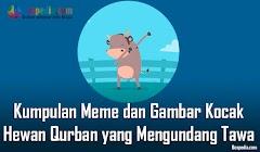 Kumpulan Meme dan Gambar Kocak Hewan Qurban yang Mengundang Tawa Terbaru 2018