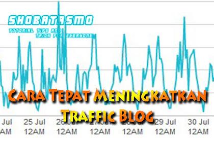 Cara Mudah Meningkatkan Traffic/Trafik Blog Pemula
