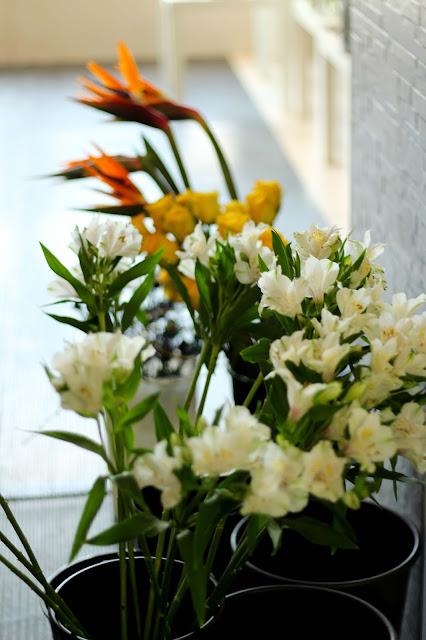 artiste,fleuriste,montreal,quartier,ahuntsic,achat,local,emmanuellericard,