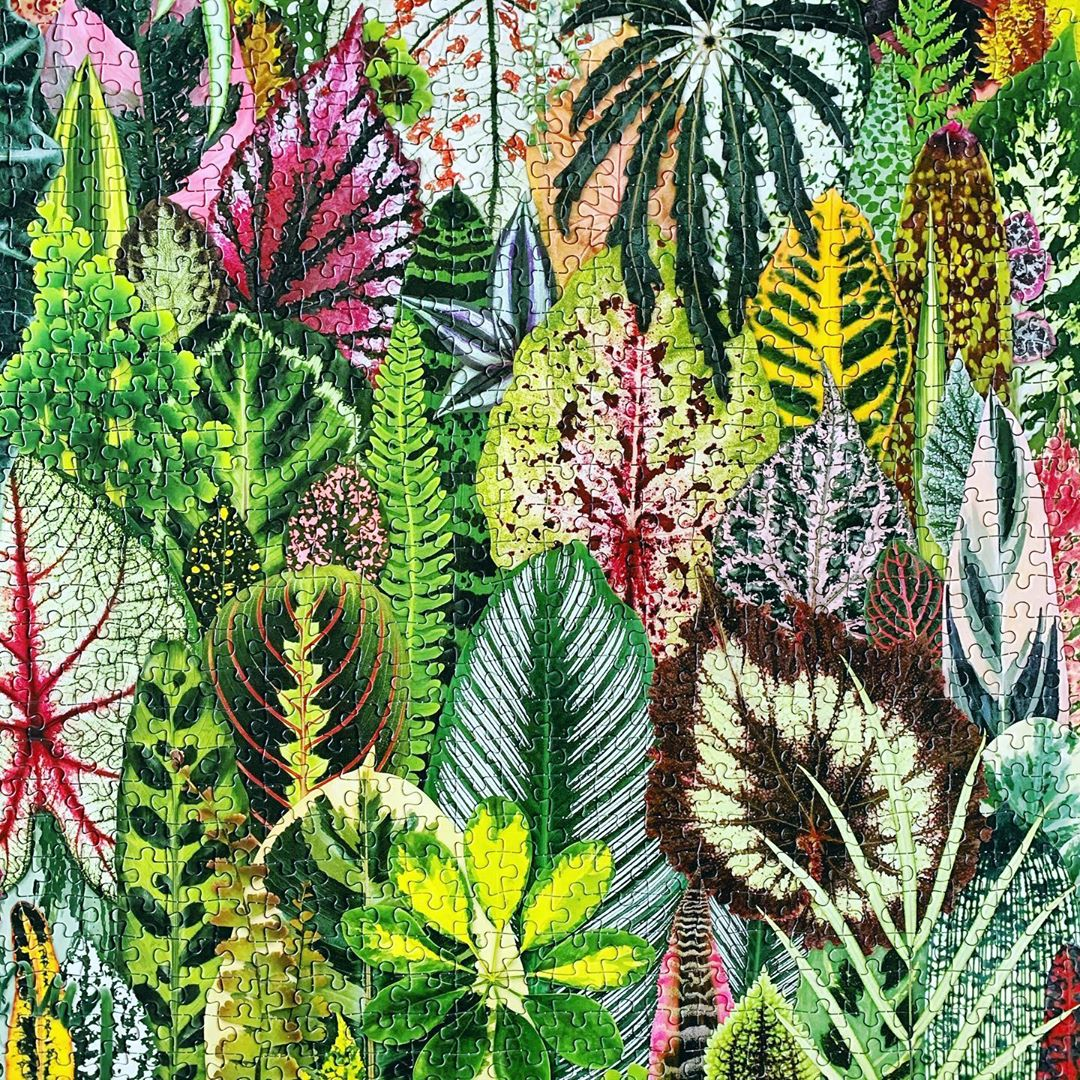 Green houseplant 1000 piece jigsaw puzzle - London lifestyle blog