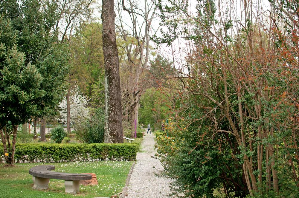 Vue d'une allée du jardin des simples de Florence