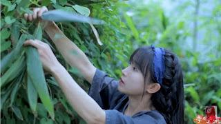Được thêm vào Kỷ lục Guinness Thế giới, kênh của Li, nơi thể hiện lối sống ở vùng nông thôn Trung Quốc, thu hút hàng triệu người xem từ khắp nơi trên thế giới.