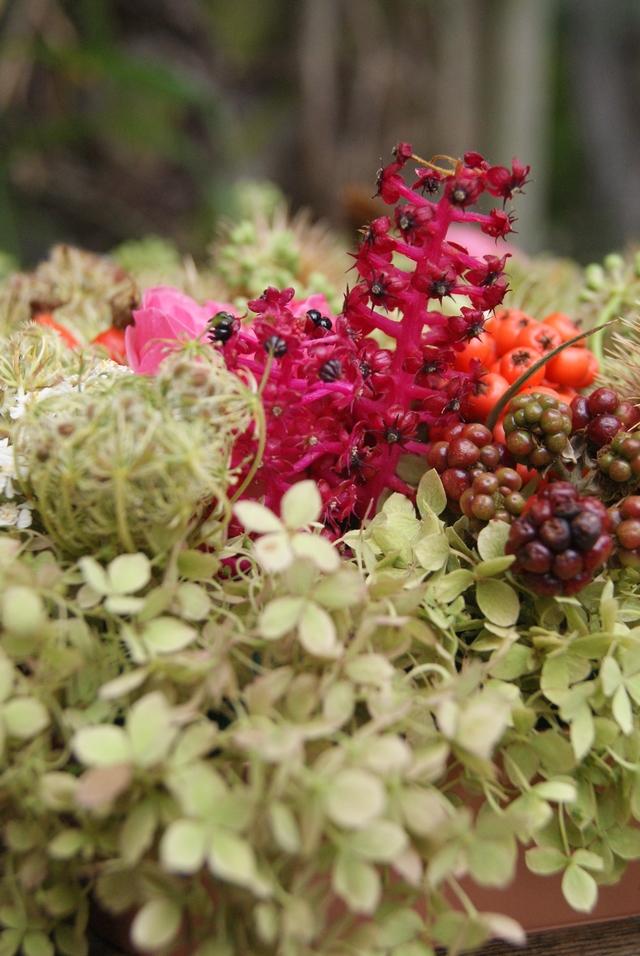 Herbstgesteck mit Hortensien Brombeeren Wilde Möhren Kermesbeere