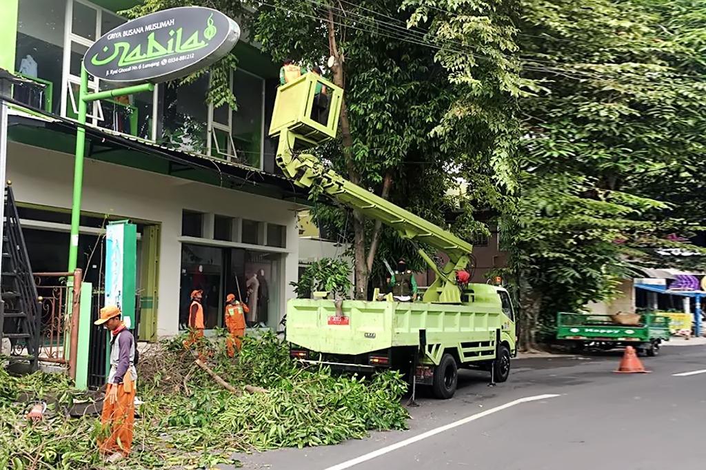 Warga Dihimbau Patuhi Prosedur Pemotongan Pohon Peneduh